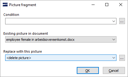 Picture fragment dialog